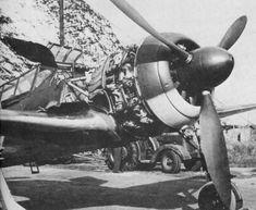Ta 152, Focke Wulf 190, Print Ideas, Luftwaffe, Wings, Air Force, Feathers, Feather, Ali