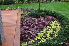 Ogród z lustrem - strona 92 - Forum ogrodnicze - Ogrodowisko