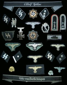 German WWII Waffen SS insignia collection,for references only,NO politics!!