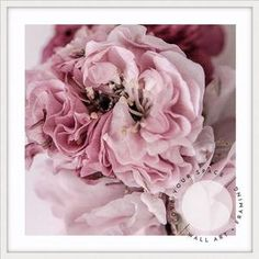 Botanicals & Florals – Page 2 – Love Your Space Your Space, Guest Room, Florals, Artworks, Style, Floral, Flowers, Art Pieces, Stylus