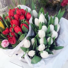 #tulips #flowers #spring