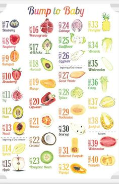 A Customized Fruit And Vegetable Baby Size Comparison