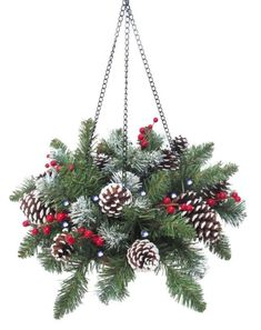 hanging baskets for winter - Google Search