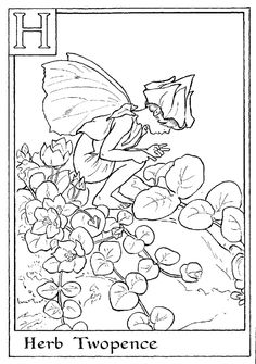 Letter H For Herb Twopence Flower Fairy Coloring Page - Alphabet Coloring Pages, Alphabet Flower Fairies On do Coloring Pages