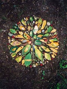 leaf and berry mandala Mandala Art, Mandalas Painting, Mandalas Drawing, Land Art, Ephemeral Art, Drawn Art, In Natura, Forest Art, Outdoor Art