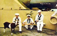 Lot-5615-12: Mascots on a Man O' War.  Note the kittens on the board.   Hand-tinted postcard by Famous V & Sons.    Photographed by Enrique Muller, 1907.  Courtesy of the Library of Congress.   Photographed through Mylar sleeve.