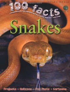 100 Facts Snakes by Barbara Taylor https://www.amazon.co.uk/dp/1848102992/ref=cm_sw_r_pi_dp_x_TUdMybX8VRXSY
