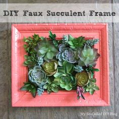 DIY Faux Succulent Frame Any kitschy dodads could be used Succulent Wall Planter, Succulent Frame, Hanging Succulents, Succulent Wreath, Faux Succulents, Succulent Arrangements, Faux Plants, Succulent Ideas, Hanging Planters