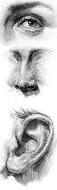 Delineate Your Lips - 111 Insanely Creative Cool Things to Draw Today - How to draw lips correctly? The first thing to keep in mind is the shape of your lips: if they are thin or thick and if you have the M (or heart) pronounced or barely suggested. Life Drawing, Figure Drawing, Drawing Sketches, Painting & Drawing, Sketching, Drawing Skills, Drawing Ideas, Human Body Drawing, Shadow Drawing