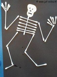 Hoe werkt een #menselijk lichaam? Thema 1 #Skelet. | Hoe-werkt-een-menselijk-lichaam | Hoe-werkt-dat | Menselijk-lichaam-deel-1-skelet