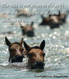 Ecclesiastes 9:11 ~ The race is not given to the swift or to the strong but to the one who endures to the end...