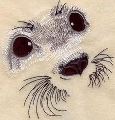 Machine Embroidery Designs at Embroidery Library! Harp Seal Pup, Baby Harp Seal, Machine Embroidery Applique, Diy Embroidery, Seal Cartoon, Cartoon Faces, Thread Painting, Pictures To Paint, Drawings