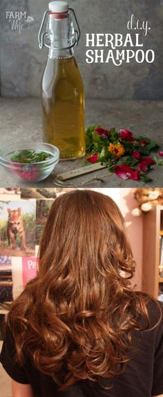 The Best Step By Step Tutorials For Homemade Hair Treatment For Damaged Hair - Homemade Herbal Shampoo - How To Repair Damaged Hair Fast With Simple And Easy Hair Products And DIY Remedies. Hair Treatment At Home For Hair Loss And Ideas And Tips And Trick Easy Hairstyles For School, Diy Hairstyles, Hairstyle Ideas, How To Grow Natural Hair, Natural Hair Styles, Natural Beauty, Homemade Hair Treatments, Natural Treatments, Hair Treatment At Home