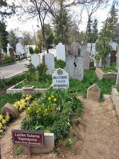 Photograph by Meral Meri Tahir Büyükkörükcü