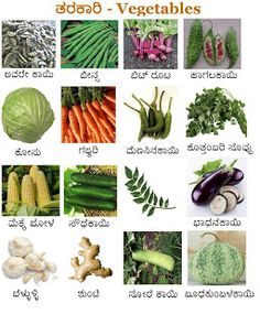 Posting a wallpaper on vegetables. Name Of Vegetables, Kannada Language, Tv Wall Decor, Our Kids, English Language, Cactus Plants, Kids Learning, Worksheets, Languages