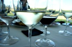 Wine tasting at Bodegas Habla, Extremadura, Spain. Image Copyright Laurel Waldron 2015.