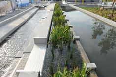 Sherbourne Common, Toronto | Water Channel with Biofiltration Bed – More than just a beautiful public space, Sherbourne Common is also the first park in Canada to integrate an ultraviolet (UV) treatment facility for neighbourhood-wide stormwater treatment into its design. Collected stormwater is treated in a UV Facility located in the basement of the park's Pavilion and released from three dramatic art features into a 240-metre long water channel — or urban river — and back out to Lake…