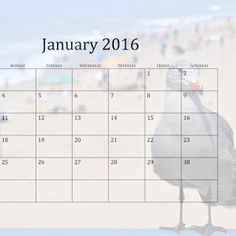 2016 California Beaches monthly calendars - Collections - Google+