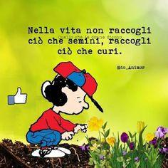 Lucy Van Pelt, Italian Quotes, Feelings Words, Quotes White, Jokes Quotes, Fun Quotes, Some Words, Good Thoughts, Decir No