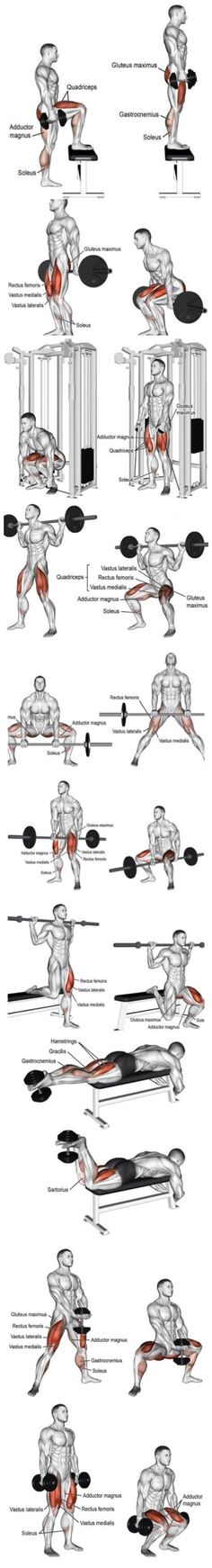 Weighted Leg exercises - Quads and hamstrings