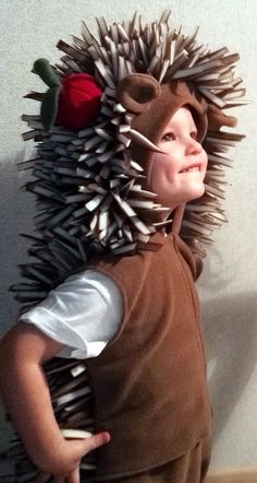 Hedgehog costume/Toddler Costume/ Kids Costume/hedgehog dress up/ handmade costume