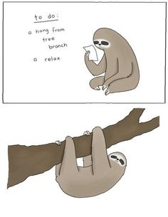 How to be a sloth. <3 i wish!