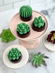 Set of 4 Succulent Cookies, Succulent favors, Wedding Favors, Cactus, Mother's Day, Housewarming Gift, Birthday Gift, baby shower by ChocolatesUnlimited on Etsy Chocolate Dipped Oreos, Chocolate Bomb, Easter Chocolate, Chocolate Gifts, Chocolate Wedding Favors, Edible Wedding Favors, Chocolate Videos, Succulent Favors, Custom Chocolate