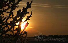 Sunrise in winter <3