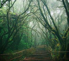 La Gomera, Ilhas Canário