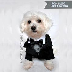 Dog Tuxedo Jacket Patterns