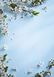 cyan background small fresh h5, Fresh, Small Fresh, Literature And Art, Background image