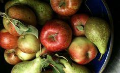 Frutas da época são mais econômicas e nutritivas