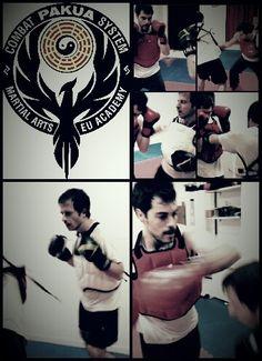 PaKua Combat Sparring Pakua Combat System #PakuaCombat #PakuaLIFE #pakua #baguazhang