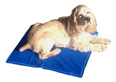 Cool Runners Self Cooling Dog Gel Pad, 35 by 19.5-Inch -- To view further for this item, visit the image link.