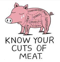 Know your cuts of meat vegan pig animal cruelty farm Quotes Vegan, Vegan Memes, Vegan Humor, Vegetarian Quotes, Reasons To Go Vegan, Mercy For Animals, Save Animals, Vegan Facts, Why Vegan