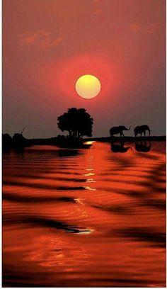 In sunset Beautiful Sunset, Beautiful World, Beautiful Places, Amazing Sunsets, Amazing Nature, Amazing Places, Beautiful Castles, Beautiful Scenery, Wonderful Places
