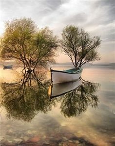 almost perfect reflection mirror water reflections tree boats lake . Amazing Photography, Landscape Photography, Nature Photography, Free Photography, Photography Backdrops, Travel Photography, Beautiful World, Beautiful Images, Beautiful Beautiful