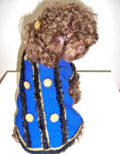 Couture Dog Military Sweater-Jacket