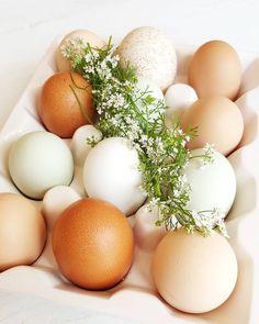 Beautiful eggs from the farm. #eggs #farmfresh