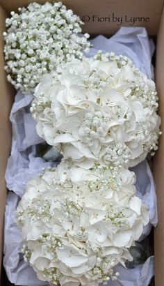 Image from http://1.bp.blogspot.com/-CTJ9sVI17hI/Up3TzLQS2dI/AAAAAAAAEUM/G0a7ulC5Oqw/s1600/white-bouquets-hydrangea-gyp.jpg.