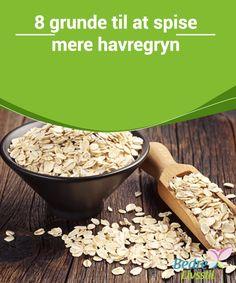 8 grunde til at spise mere havregryn  Havregryn er en af de mest #komplette og gavnlige kornsorter for den #menneskelige krop. Hvis du er #laktoseintolerant, kan du bruge sojamælk eller lave en smoothie med #grøntsager og havregryn i stedet.