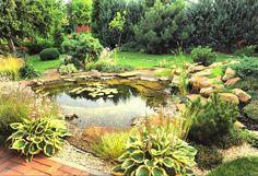 Создаем искусственный пруд на участке – природная красота и релакс