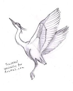 How to draw a heron step 4