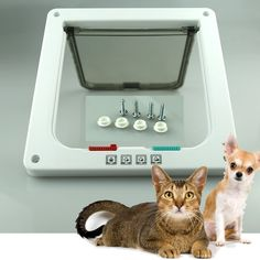 Xefeel 4 Way Cat Door Flap Lockable Pet Cat Kitten Dog Puppy Door * To view further for this item, visit the image link. (This is an affiliate link and I receive a commission for the sales)