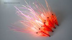 Tying a Pattegrisen Shrimp variant with Davie McPhail