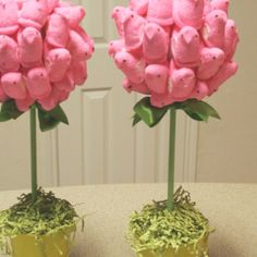 Peep topiaries for Easter gifts or decorations... Link has many Easter ideas involving peeps products.