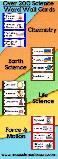 Over 200 science word wall vocabulary words for chemistry, earth science, life science, and force and motion. Pictures included.  Full list of vocabulary words on site.