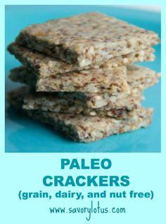 Paleo Crackers (grain, dairy and nut free) | savorylotus.com