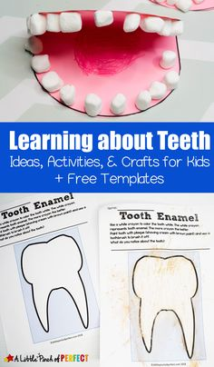 •	Learning about Teeth Activities & Free Printables: Tips for adults and activities for kids to learn about dental hygiene including free printables, crafts, hands on activities, and more in partnership with the American Dental Association. (#AD #dentalhealth #handsonlearning #kidsactivities)