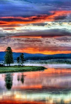 Yellowstone National Park -  WY US. by Dee Langevin
